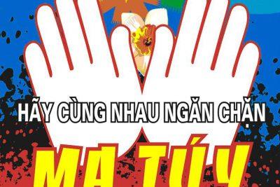 PHÒNG CHỐNG MA TÚY